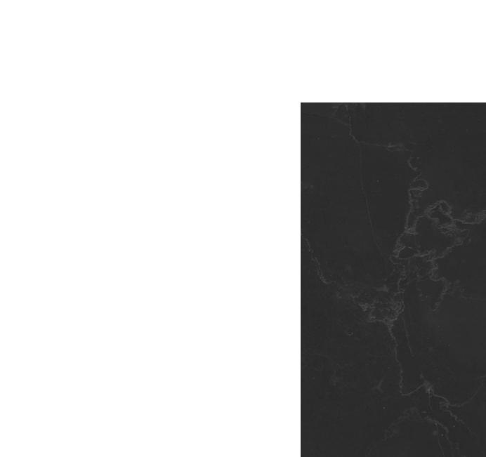 client-logo1-light
